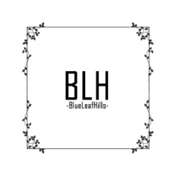salon BLH  -BlueLeaf-Hills-